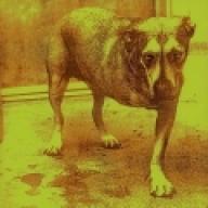 Grunge, punk rock —