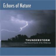 Thunderstorm —