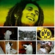 Bob Marley & Co. —