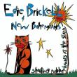 Edie Brickell & New Bohemians — Shooting Rubberbands at the Stars