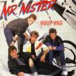 Mr. Mister — BROKEN WINGS: THE BEST OF MISTER