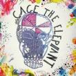 Cage The Elephant — CAGE THE ELEPAHNT