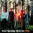 Soul Quality Quartet — DIP