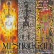 Meshuggah — Destroy Erase Improve