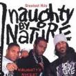 Naughty By Nature — 19 NAUGHTY III