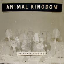 Animal Kingdom — Sings and Wonders