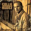 Collie Buddz — The Last Toke