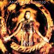 Angélique Kidjo — Aye