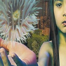 The Future Sound Of London — Lifeforms